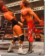 Hell in a Cell HHH Vs HBK