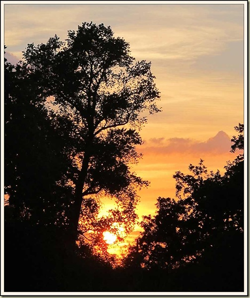 A Cheshire sunset