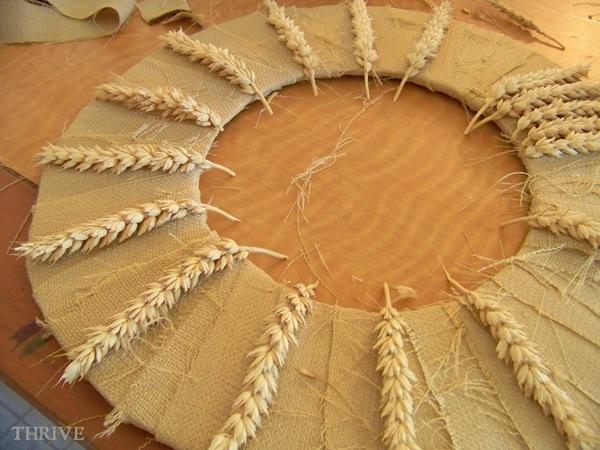 wheat.7