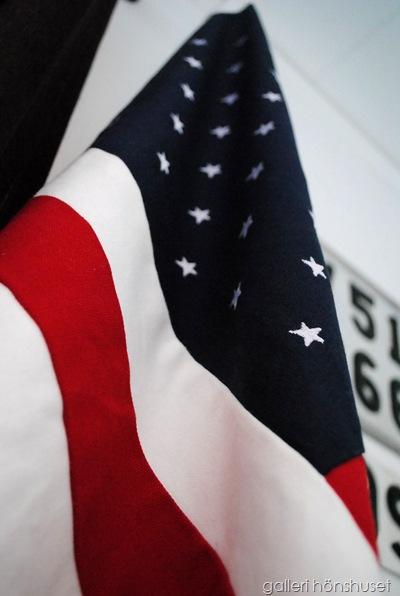 flagga 005