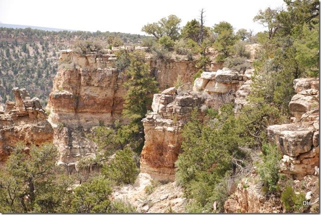 05-17-13 B Grand Canyon North Rim Drive (131)