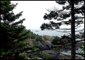04k6  -  Hike - Trailhead to Green Point - Seaweed Covered Rocks