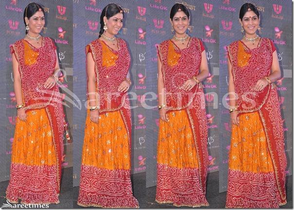 Sakshi_Tanwar_Embroidery_Lehenga