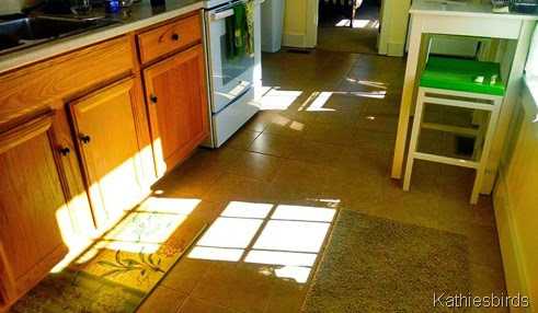 3-17-14 sunshine in kitchen-cell pic
