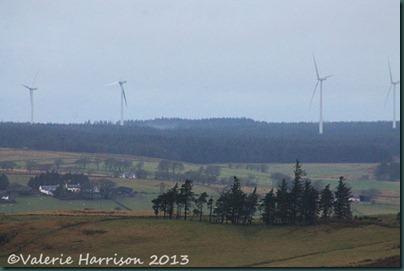 23-Whitelea-windfarm