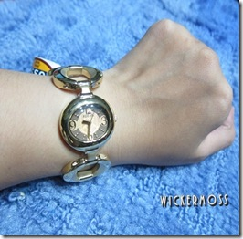 FOSSIL008FOSSIL