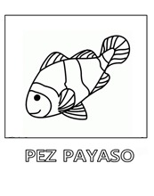 pez-payaso 5 1