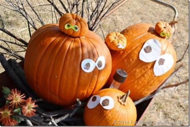 pumpkin to jack o lanterns