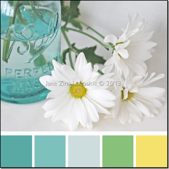 Color Swatch - Daisies