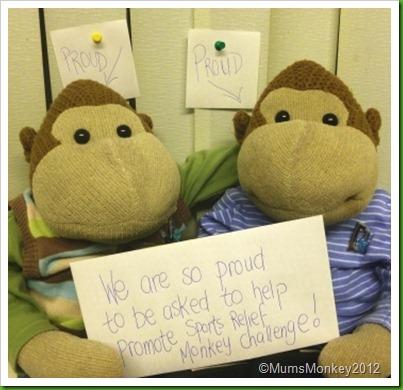 Sport Relief Monkey Challenge
