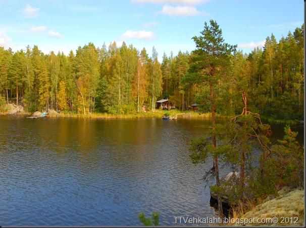 ötökät ikkunssa haukijärvi keloja 033