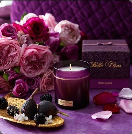 539460_10150697577407122_253351737121_9303533_472139368_n belle fleur