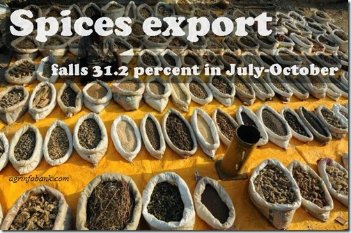 Spices export falls 31.2 percent in July-October