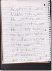 nibbles1