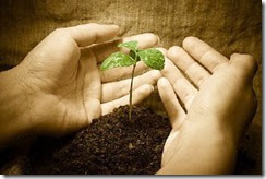 sowing-and-reaping[6]