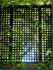 fence-lattice-morguefile-225x300