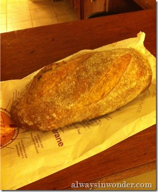 Fresh_Sourdough_from_Pinchmysalt (2)