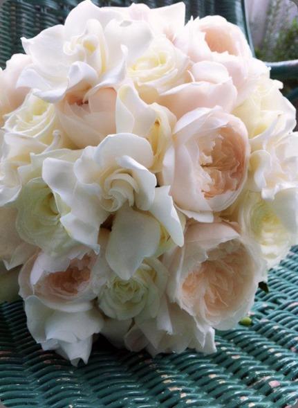 gardenia 527887_383896221635277_1691011472_n  the bouquets od ascha jolie au