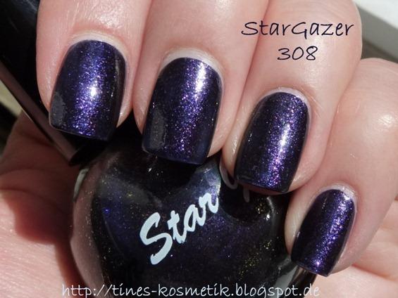 StarGazer 308 4