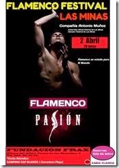 flamenco pasion