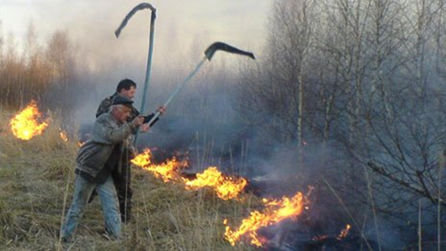 Battling fire in the forest surrounding Chernobyl. BBC