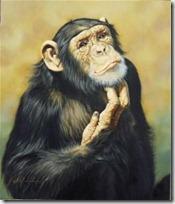 monos piensan blogdeimagenes (11)