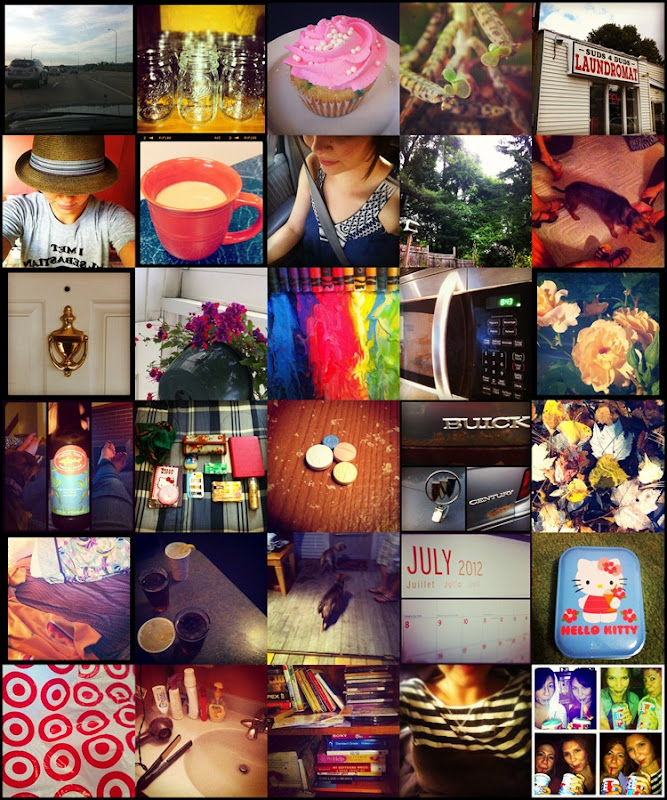 photoadayjune