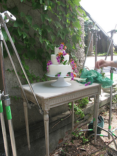 We wanted to shoot the cake in front of the ivy, but unfortunately it was too high up on the wall. Not to be deterred, we rigged a levitating table that could reach the plant!