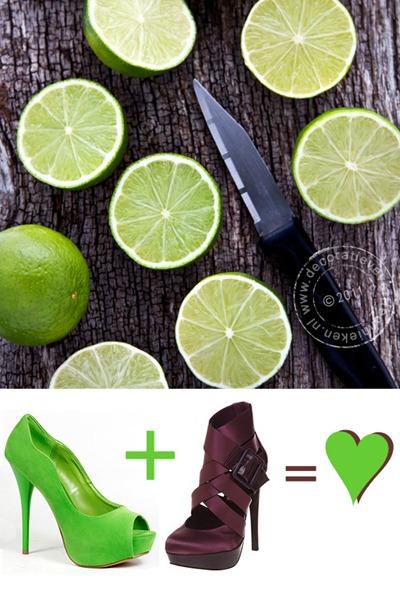 verftechnieken-limes-pumps