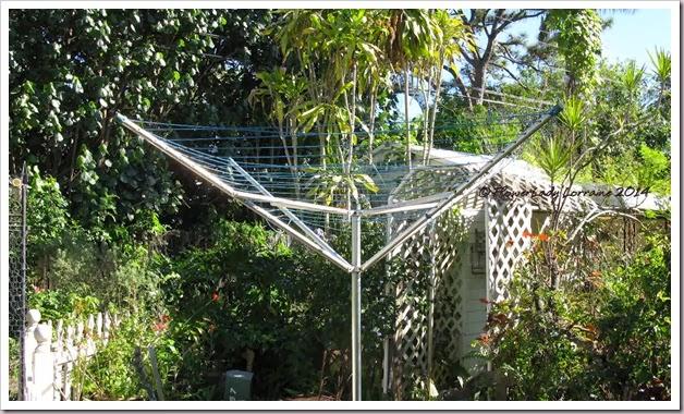01-19-clothesline7