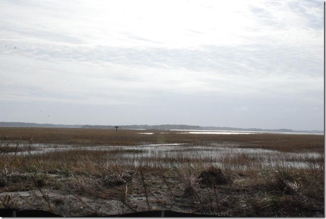 11-18-12 Delaware Seashore State Park 020