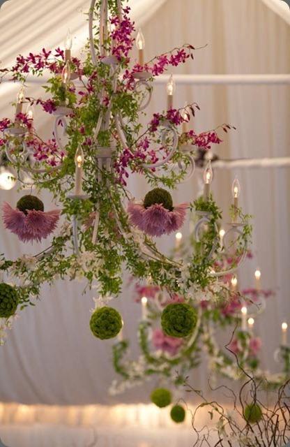 31054_456586708867_4284290_n  romance of flowers
