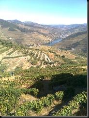 Pinhão à Vista desde Valença do Douro