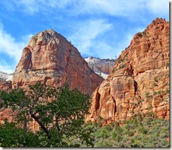 Zion National Pk 099