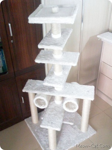 building your cat tree 11