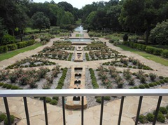 botanic gardens from overlook