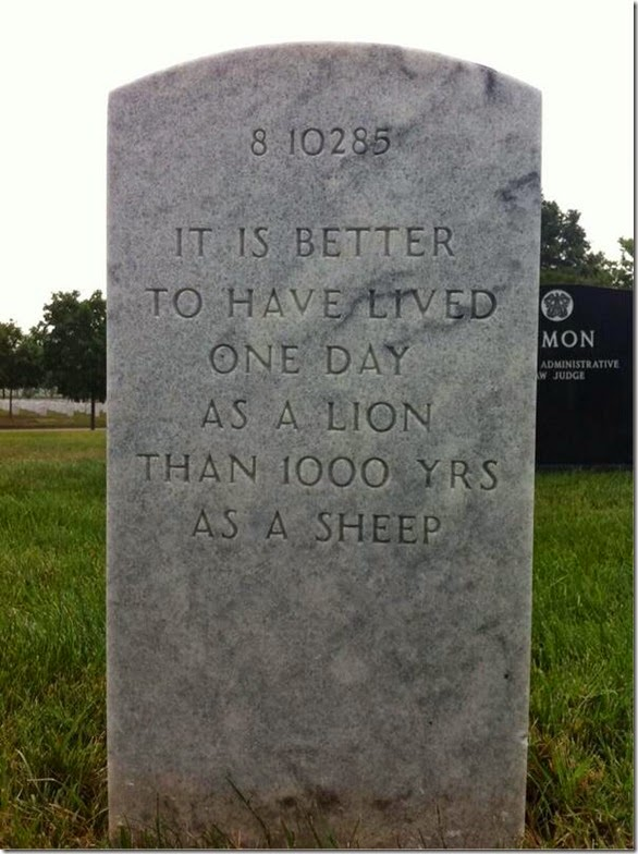 Better One Day as a Lion.. than 1000 as a Sheep