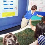 catching crabs at the Shinagawa Aquarium in Shinagawa, Tokyo, Japan