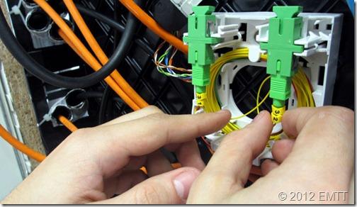 PAU 8686 Identifica fibras