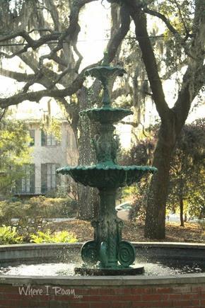 Savannah scenes 3