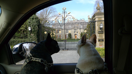 This mansion, the Champ Soleil, was home to Lucy Drexel Dahlgren in the early 20th century.  Look at the golden details on the gate, Francesca!  How lovely!