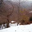 inverno_27_20101008_2025971091.jpg