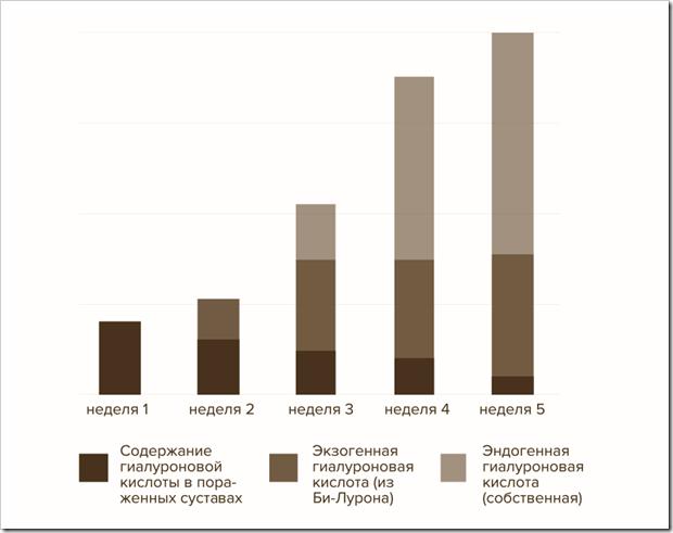 Динамика изменения содержания гиалуроновой кислоты в суставе при приеме Би-Лурона