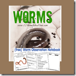 1st grade worm observatino notebook