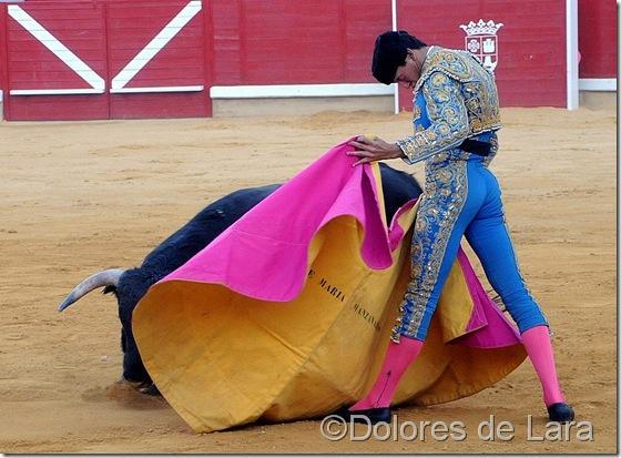 ©Dolores de Lara (24)