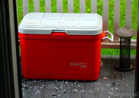 4. cooler on porch-kab