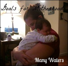 Many Waters Goals for Motherhood