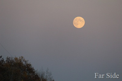 Harvest Moon  Sept 29