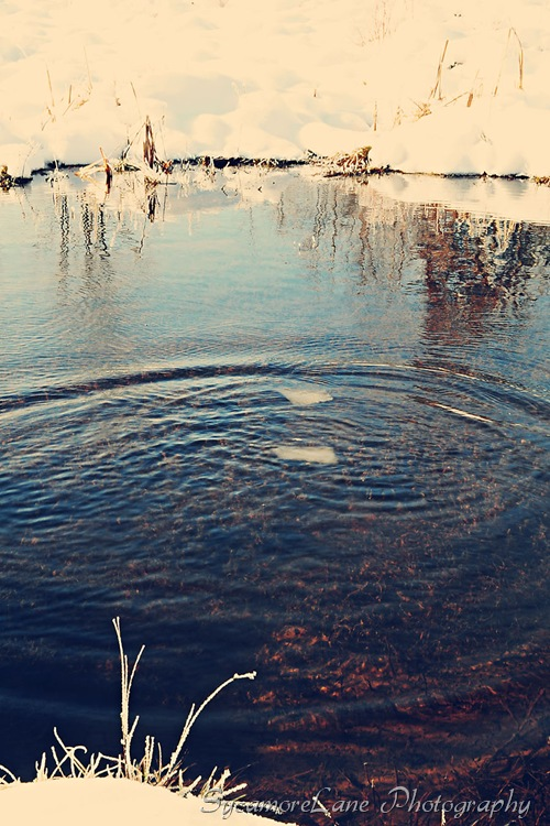 ripples-w