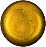 LUSH_Duschgel_Pot_of_Gold_Produkt